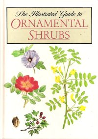 Image for The Illustrated Guide to Ornamental Shrubs